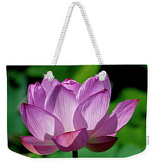 Weekender Tote Bag featuring the photograph Lotus Beauty--buxom Beauty II Dl0090 by Gerry Gantt