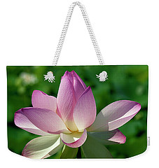 Lotus Bud--getting The Hang Of It Iv Dl0096 Weekender Tote Bag