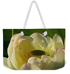 Weekender Tote Bag featuring the photograph Lotus Flower 4 by Buddy Scott