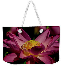 Weekender Tote Bag featuring the photograph Lotus Flower 7 by Buddy Scott