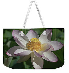 Lotus Flower In Bloom Weekender Tote Bag