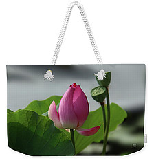 Lotus Flower In Pure Magenta Weekender Tote Bag