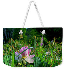 Weekender Tote Bag featuring the photograph Lotus Landscape 3 by Buddy Scott