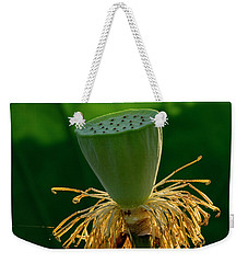 Weekender Tote Bag featuring the photograph Lotus Pod 2017 3 by Buddy Scott