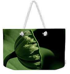 Weekender Tote Bag featuring the photograph Lotus Pod 3 by Buddy Scott