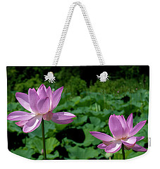 Weekender Tote Bag featuring the photograph Lotus--sisters II Dl0083 by Gerry Gantt