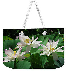 Weekender Tote Bag featuring the photograph Lotus--sisters Iv Dl0085 by Gerry Gantt