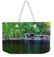 Louisiana Swimming Instructor  Weekender Tote Bag