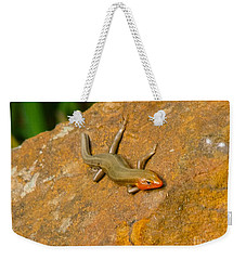 Lounging Lizard Weekender Tote Bag by Rand Herron