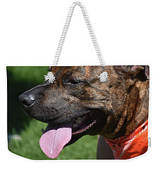 Lovable Pitbull Tired From Plating With Friends Weekender Tote Bag