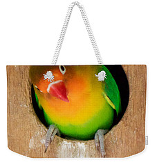 Love Bird Weekender Tote Bag by Sean Griffin