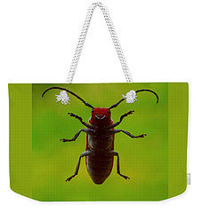 Weekender Tote Bag featuring the photograph Love Bug by Danielle R T Haney