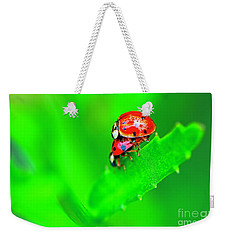 Weekender Tote Bag featuring the photograph Love Bugs by Sharon Talson