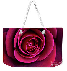 Weekender Tote Bag featuring the photograph Love Is A Rose by Linda Lees