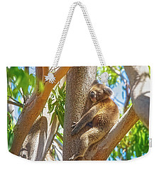 Weekender Tote Bag featuring the photograph Love My Tree, Yanchep National Park by Dave Catley