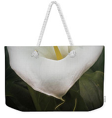 Weekender Tote Bag featuring the photograph Love by Peggy Hughes