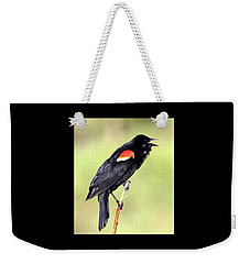 Weekender Tote Bag featuring the photograph Love Song by Shane Bechler
