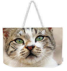Weekender Tote Bag featuring the photograph Loved by Munir Alawi