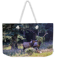 Loving The New Hairdo Weekender Tote Bag