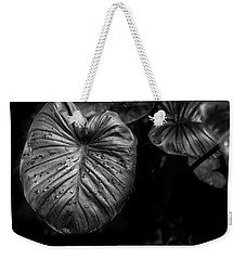 Weekender Tote Bag featuring the photograph Low Key Nature Background, Textured Plants, Leaves For Decorativ by Jingjits Photography