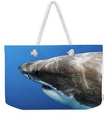Lucy's Profile Weekender Tote Bag by Shane Linke