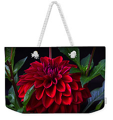 Luminous Red Dahlia Weekender Tote Bag