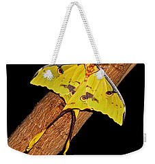 Weekender Tote Bag featuring the photograph Luna Moth by Judy Vincent