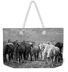 Weekender Tote Bag featuring the photograph Lunch Break by Joan Davis
