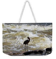 Lunch In The James River 10 Weekender Tote Bag