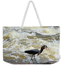 Lunch In The James River 13 Weekender Tote Bag