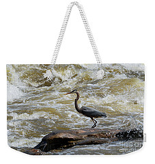 Lunch In The James River 3 Weekender Tote Bag