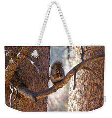 Weekender Tote Bag featuring the photograph Lunch Time by DeeLon Merritt