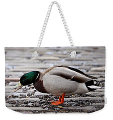 Weekender Tote Bag featuring the photograph Lunch Time by Jeremy Lavender Photography