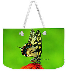 Weekender Tote Bag featuring the photograph Lunchtime by Byron Varvarigos