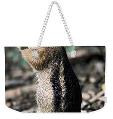 Weekender Tote Bag featuring the photograph Lunchtime For Ground Squirrel by Sally Weigand