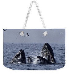 Lunge Feeding Humpback Whales Weekender Tote Bag