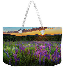Weekender Tote Bag featuring the photograph Lupine Lumination by Bill Wakeley