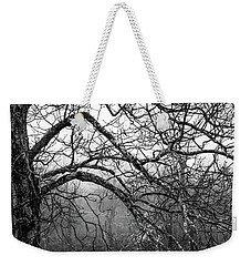 Weekender Tote Bag featuring the photograph Lure Of Mystery by Karen Wiles
