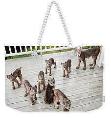 Lynx Family Portrait 11x14 Weekender Tote Bag