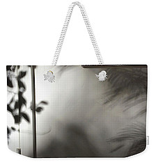 Lysiloma Shadows Weekender Tote Bag by Kim Nelson