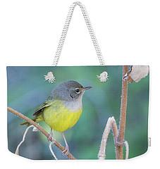 Macgillivray's Warbler 5997-092517-1 Weekender Tote Bag