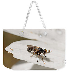 Weekender Tote Bag featuring the photograph Macro Bugs by Nikki McInnes