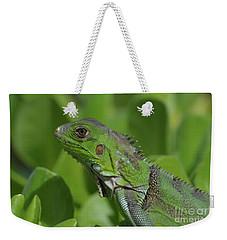 Macro Of A Green Iguana Weekender Tote Bag by DejaVu Designs
