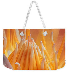 Weekender Tote Bag featuring the photograph Macro Water Lily by Chad and Stacey Hall