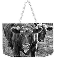 Mad Cow  Weekender Tote Bag