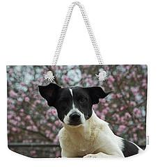 Madison In Spring Weekender Tote Bag