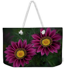 Weekender Tote Bag featuring the photograph Magenta African Daisies by David and Carol Kelly