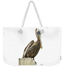 Majestic Gulf Shores Pelican 1071a Weekender Tote Bag