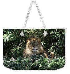 Magestic Lion Weekender Tote Bag