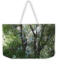 Magic Of Komorebi Weekender Tote Bag